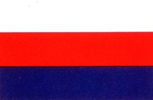 nazi france flag